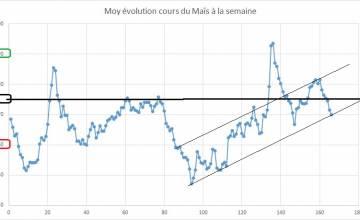Point hebdomadaire marché des céréales 9 Mars 2019