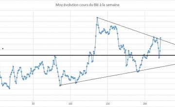 Point hebdomadaire marché des céréales 31 Mars 2020