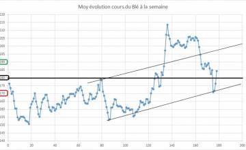 Point hebdomadaire marché des céréales 1er Juin 2019