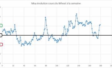 Point hebdomadaire marché des céréales 10 Juin 2019
