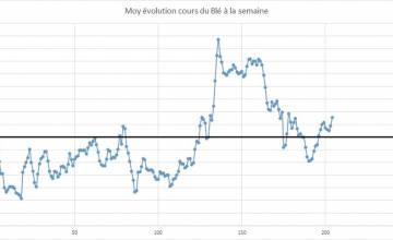 Point hebdomadaire marché des céréales 02 Décembre 2019