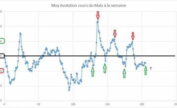 Point hebdomadaire marché des céréales 09 Décembre 2019