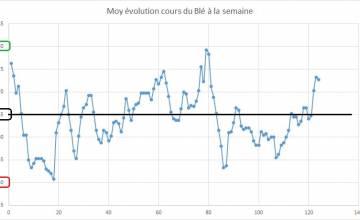 Point hebdomadaire marché des céréales 19 Mai 2018